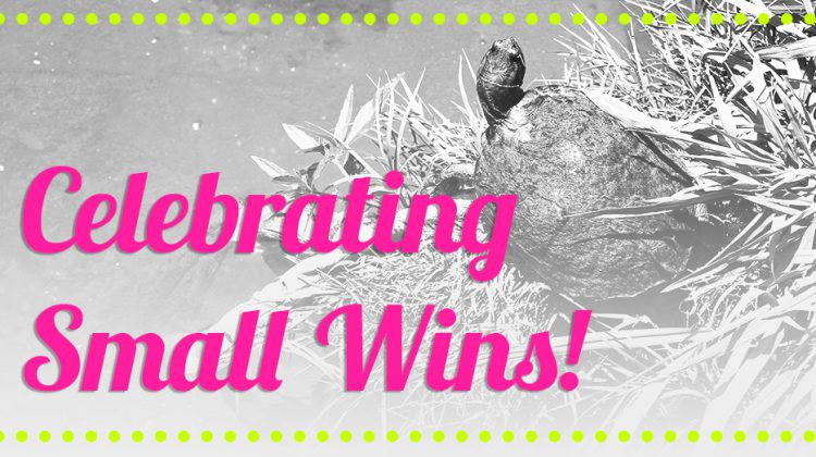 Celebrating Small Wins Fit and Awesome